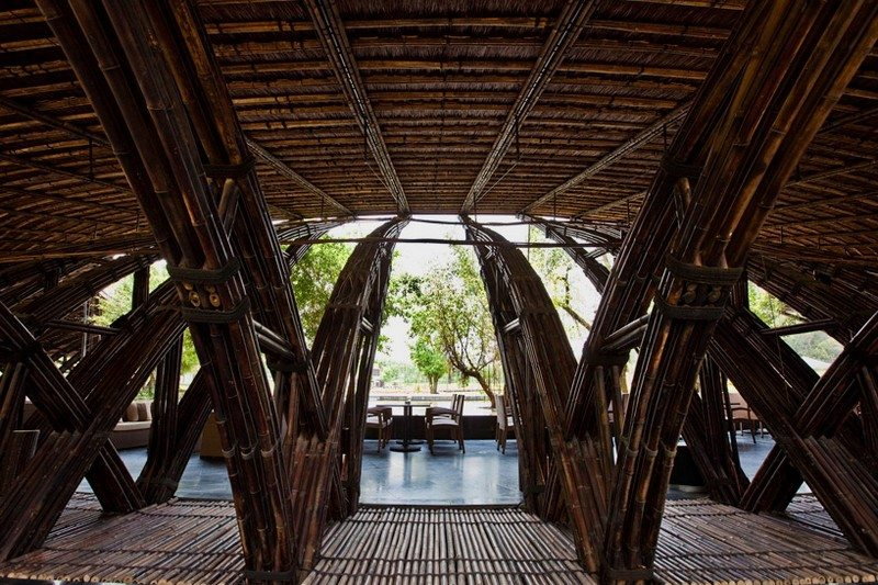 More Bamboo Brilliance