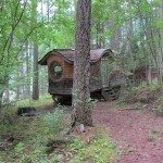 Gypsy Wagon In The Woods