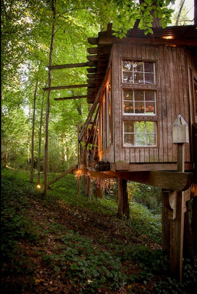 Magic Treehouse in the City