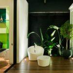 Shakin' Stevens' Melbourne Home