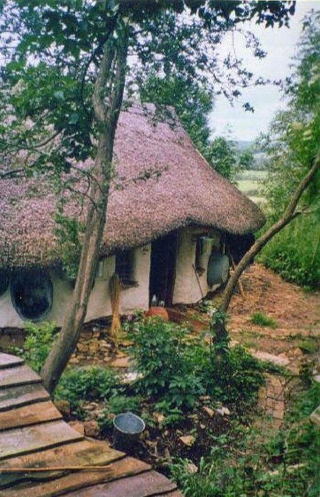 Eco-friendly $250 Natural Home