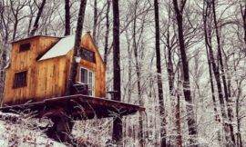 Young couple build a cabin in the forest for $4,000