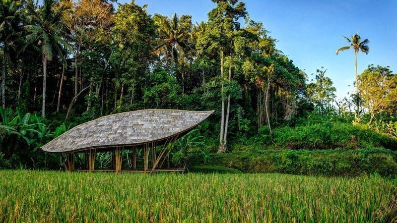 The Yoga Pavilion by IBUKU