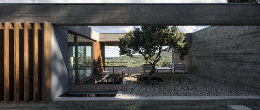 The inspiration for the house, a single holm oak tree, stands in an open concrete patio.