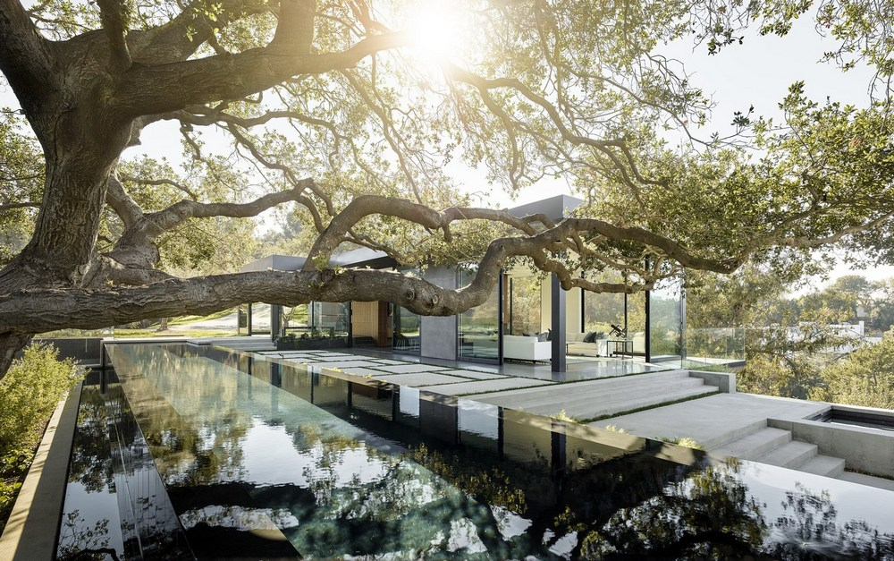 A large oak tree is reflected on the waters of a gorgeous infinity pool  in Oak Pass Main House.